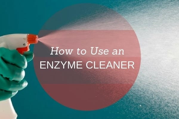 How to use an Enzyme Cleaner